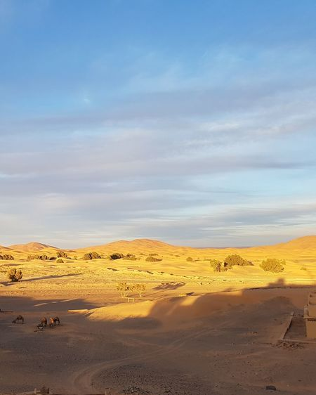Dramatic Sky Landscape No People Sky Nature Outdoors Day Sunlight Multi Colored Morocco Desert Tranquility Dunes African