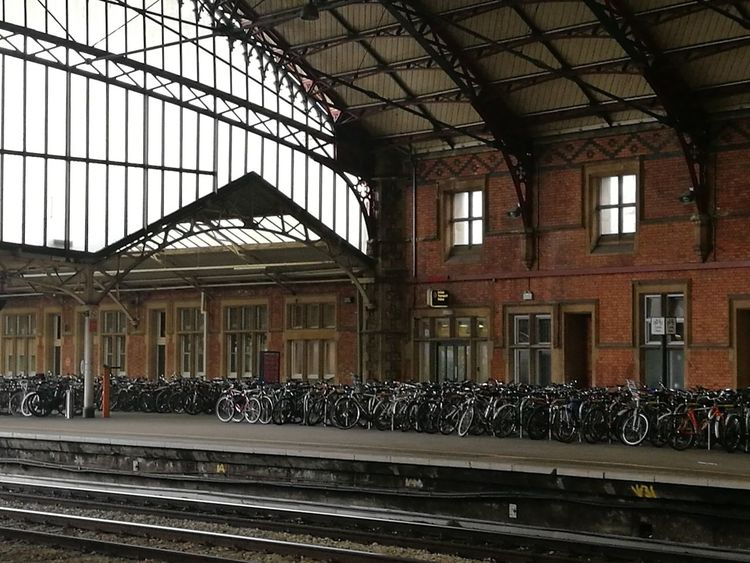 Bikes at the railway station Bikes Parking Bikes In The City Bikesaroundtheworld Waiting For You Waiting Area Railway Station Bikes In England Bikes Bikes At The Railway Station Architecture Indoors  Window Day People Mobility In Mega Cities The Traveler - 2018 EyeEm Awards