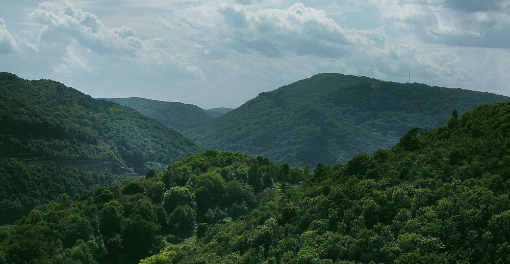 Beauty In Nature Ciel Cloud Cloud - Sky Doubs Forest Foret Igersdoubs Landscape Montagne Mountain Mountain Range Nature Nuages Paysage Scenics Sky Tourism Tranquil Scene Tranquility Tree