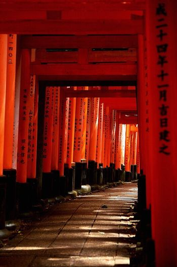Inari Shrine Orange Color Architecture Shrine Red The Way Forward Built Structure Architectural Column Indoors  Spirituality No People Place Of Worship Travel Destinations Day