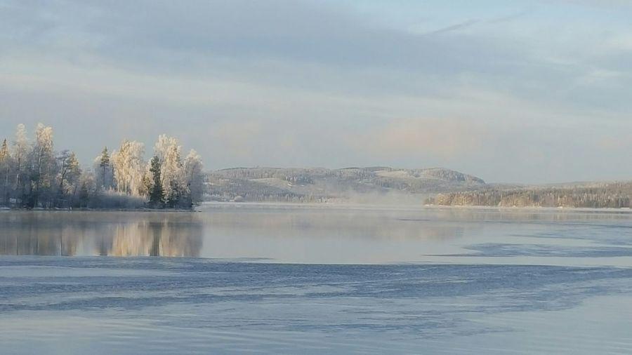 It's Cold Outside Sweden Nature Sweden-landscape Winter Landscape