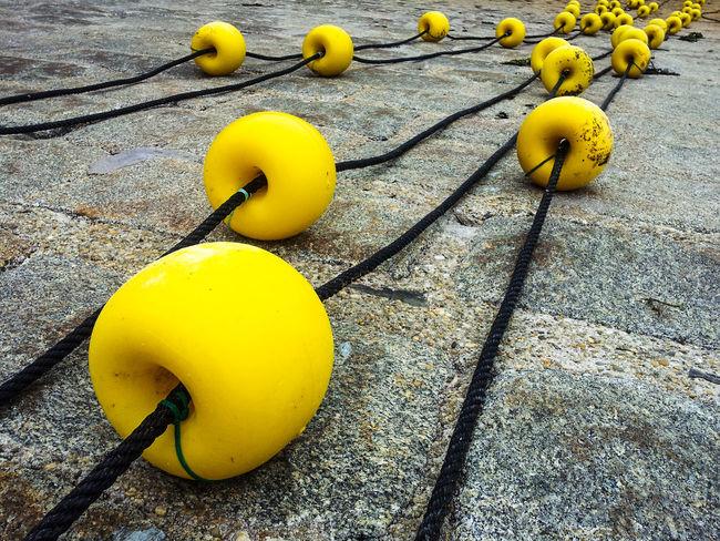 Floats Buoys Fisheries Sea Yellow Ropes Quay