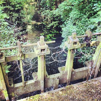 #water #wasser #nature #natur #instagood #instamood #instadaily #hipstamatic #picoftheday #pictureoftheday #rheydt #nrw Instamood Wasser Instagood Instadaily Pictureoftheday Rheydt Water Nature Hipstamatic Natur NRW Picoftheday