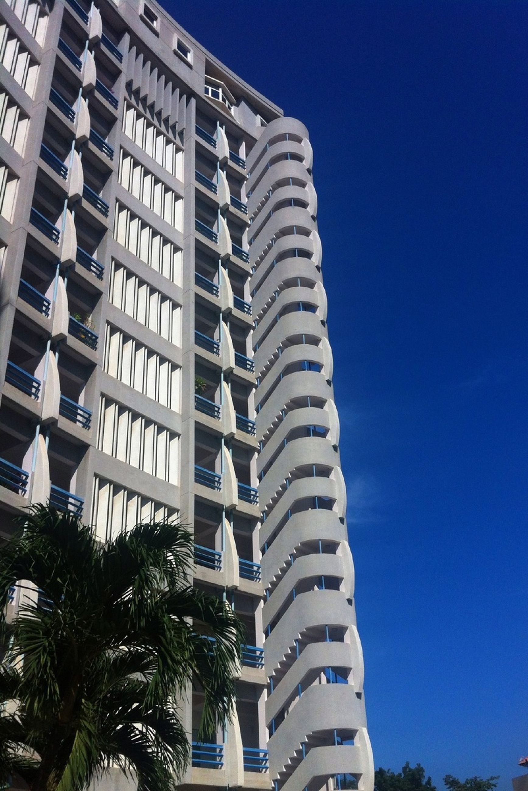 building exterior, architecture, built structure, city, low angle view, clear sky, building, residential building, blue, modern, residential structure, office building, apartment, sky, window, skyscraper, tall - high, tree, outdoors, city life