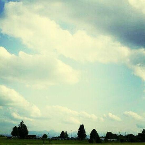 Skylining