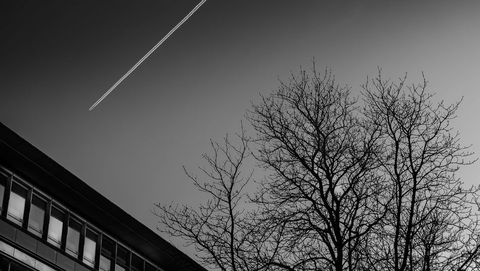 Fuji X-M1 Architecture Bare Tree Beauty In Nature Black And White Blackandwhite Branch Built Structure Clear Sky Contrail Day Low Angle View Nature No People Outdoors Sky Tree Vapor Trail Streetphotography Bw_collection Welcome To Black