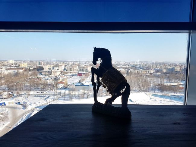 in restaurant on 14 floor 😊 View Out Of The Window Streets Wide Angle Horizon Horse Statue Good View Town TOWNSCAPE Building Sky Snow Winter No People One Animal Day Domestic Animals Animal Themes Mammal Outdoors