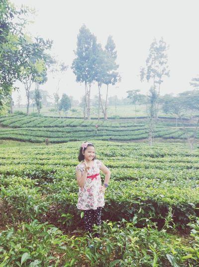 Tea Garden with my family