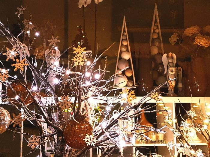 Christmas Christmas Lights Illuminated Lieblingsteil Shades Of Winter Capture Tomorrow