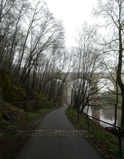 The Way Forward Road Tree Tranquility No People Tranquil Scene Day Nature Outdoors Scenics Sky Beauty In Nature Way Viaduct Viadukt Grass Landscape Foggy Fog Foggy Day Beauty In Nature Fog In The Trees Foggy Landscape Fog_collection Foggy Morning