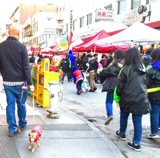 Festival Season Festival San Francisco Chinatown Street People Booth Tents Stores Shops Buildings Signs Advertisement Posts Colors Coloful Colour Of Life California What's On The Roll Dog Fire Hydrant Newspaper Stand People And Places