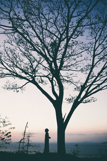 Silhouette of woman standing by tree against sky