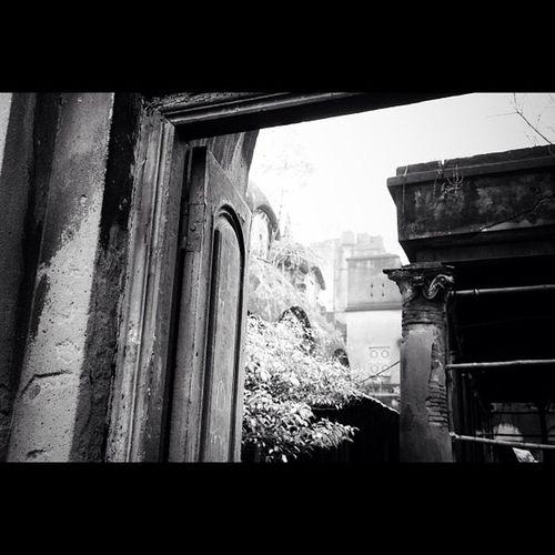 Hidden temple #instagood #primeshots #theonetowatch #noir #noiretblanc #bw #bwlovers #india #calcutta #kolkata #igersindia #igersfrance #jj #bw #temple #wood #door Bw India Kolkata Noiretblanc Calcutta Jj  BWlovers Instagood Architecture Primeshots Wood Igersfrance Noir Theonetowatch Sky Igersindia Door Tree Temple Ruins