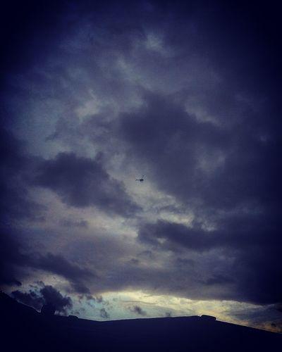 Birdy in the Sky 🔻🔵🔴🔷🔺♈