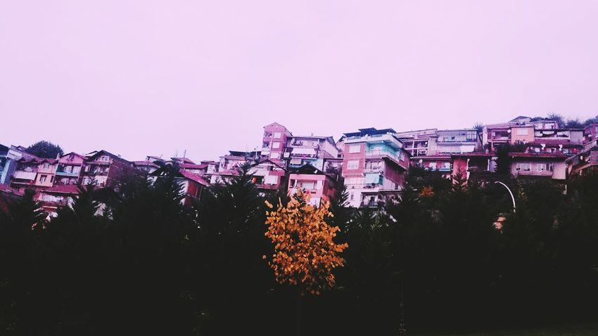 Urban Skyline Architecture City Cityscape Building Exterior No People VSCO Vscocam Fallcolors Fall Fall Colors Fall Beauty Fall Season October Kocaeli Izmit