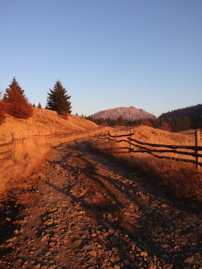 Dirt road along landscape and against clear blue sky
