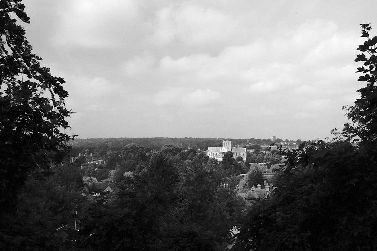 Winchester Cathedral Black & White Architecture Blackandwhite Building Building Exterior Built Structure City Cloud - Sky Day Environment Growth High Angle View House Nature No People Outdoors Plant Residential District Sky Town TOWNSCAPE Tree