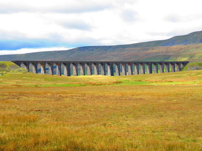 Bridge - Man Made Structure Landscape Ribble Valley Ribblehead Ribblehead Viaduct Ribbleheadviaduct Scenics Viaduct Viaducts Yorkshire Yorkshire Dales Yorkshiredales