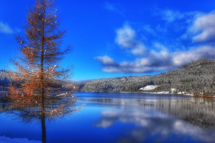 Blue Sky Water Reflection Cloud - Sky Nature Outdoors No People Beauty In Nature Be. Ready. Nature Collection Getting Inspired EyEmNewHere Winter Wonderland EyeEm First Photo Snowy Forest EyeEm Best Shots - My Best Shot Eye4photography  EyeEm Selects Landscape_Collection EyeEm Best Shots - Landscape Cold Temperature EyeEm Best Shots - Nature EyeEmBestPics Capture The Moment