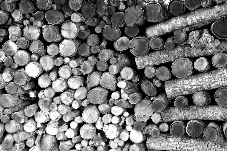 Abundance Backgrounds Close-up Day Deforestation Forestry Industry Large Group Of Objects Log Lumber Industry No People Outdoors Stack Timber Wood - Material Woodpile