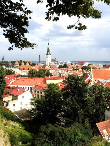 Architecture Tree Built Structure Building Exterior Sky No People Day Outdoors Cloud - Sky Town City Bell Tower Cityscape Nature Tallinn Old Town Toompea