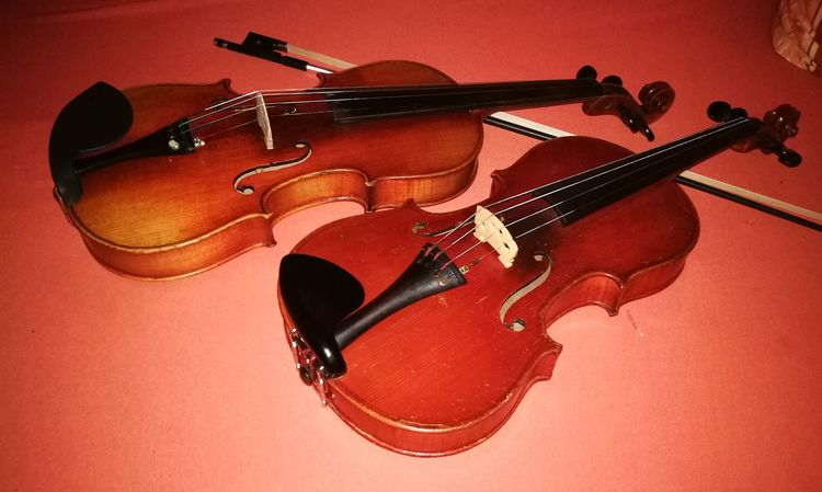 Music Arts Culture And Entertainment Musical Instrument String Instrument Violine  Violin Viol