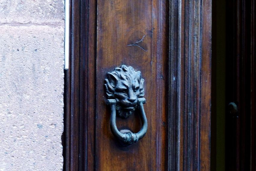EyeEm Selects Door Door Knocker Wood - Material No People Close-up Full Frame Lion - Feline EyeEmNewHere The Week On EyeEm Fotografie Photography Aesthetic Aesthetics Amazing Awesome BosaSardinia Italy Lion Door Knocker Mediterranean  Mediterranean Culture Material Vacations Vacation