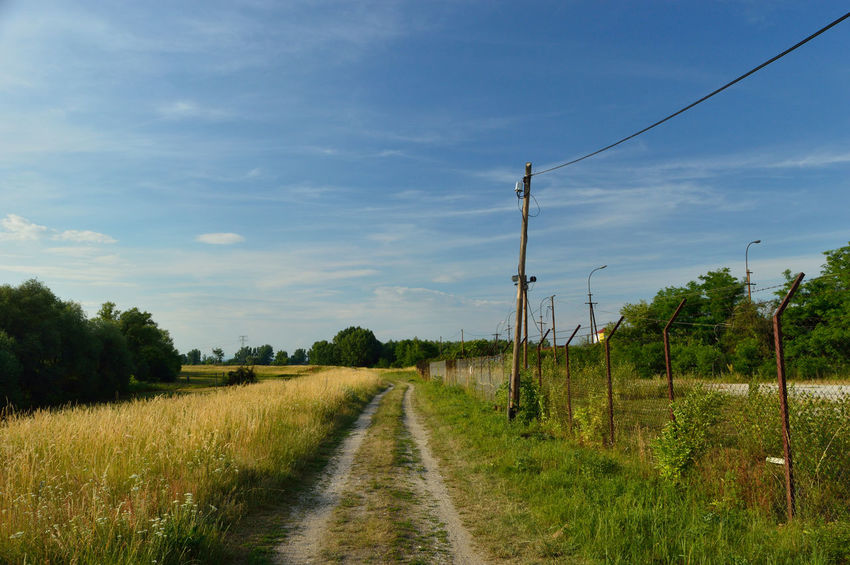 The way to the summer Agriculture Cable Cloud - Sky Day Field Grass Landscape Nature No People Polarizing Filter Road Sky The Way Forward Tree