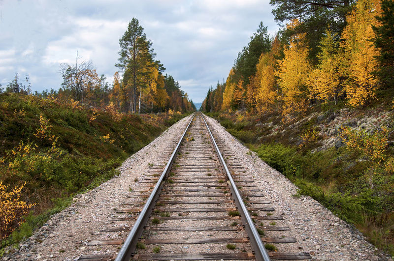 The Great Outdoors - 2019 EyeEm Awards Sweden Dalarna Trail Direction The Way Forward Railroad Track Nature Transportation Beauty In Nature Autumn No People Scenics - Nature EyeEm Best Shots EyeEm Nature Lover EyeEm Best Edits