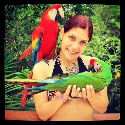 Instafollow Like4like Followme Instalike follow4follow instagramers tagstagram tagaforlikes life 2014 wedding love Mexico cancun xcarit nature bird birds honeymoon