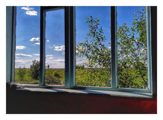 Window Door Day No People Plant Growth Architecture Outdoors Sky Close-up Tree Nature Uncultivated Sunbeam Scenics Adult Multi Colored Social Issues Back Lit Stadium Spraying Men Indoors  Grass Dessert