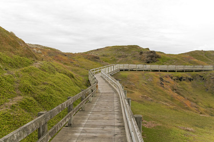 Footpath Leading Towards Mountain