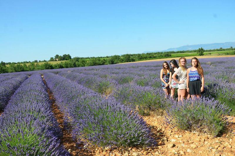 Vacances Love Friends Lavandes Été Summer Summertime Girls Amazing Quinson