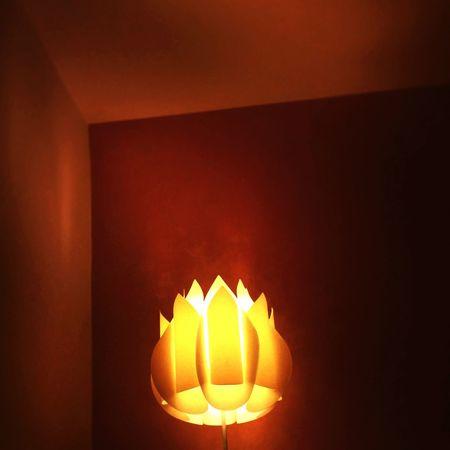 Part of light