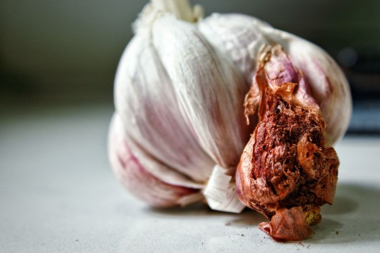 Close-up of rotten onion on table