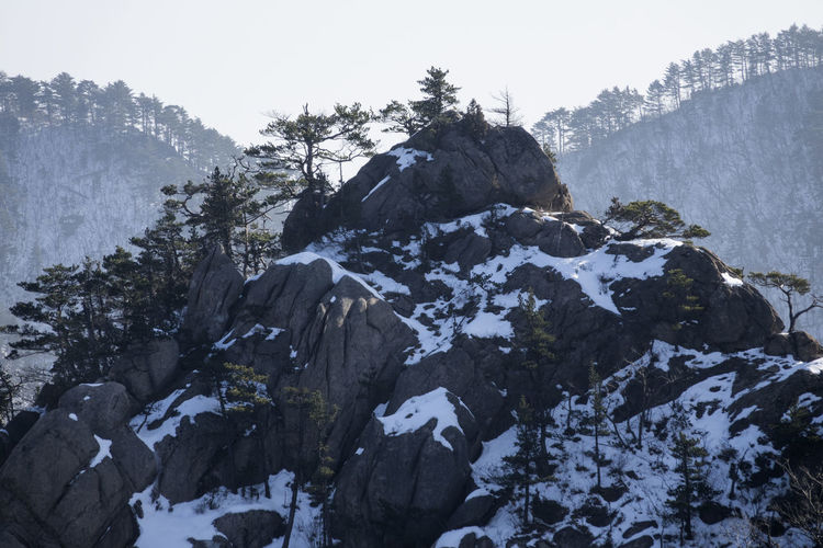 Winter in Mountain Seorak, South Korea Beauty In Nature Cold Cold Temperature Day Mountain Mountain Peak Nature No People Outdoors Rock Rocky Seoraksan Seoraksan National Park Sky Snow Tranquility Tree Winter Winter