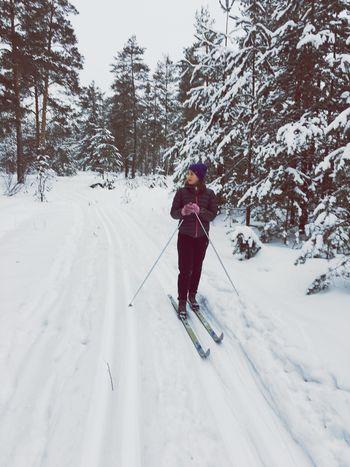 Winter Snow на лыжах зима В лесу спорт лыжная прогулка