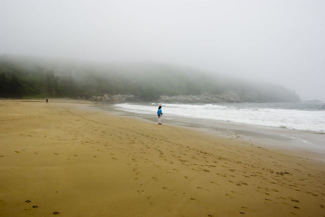 Beach Coastline Cold Contemplation No.5 Damp Fog Foggy Getting Away From It All Horizon Over Water Moist Moisture Morning Ocean Outdoors Quiet Moments Quiet Places Sand Sea Seascape Shore Summer Vacations Water Wave Woman