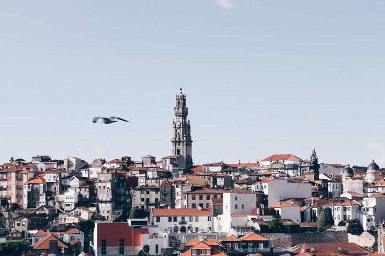 Clerigos church amidst cityscape against sky
