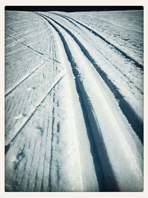 Ski Crossing