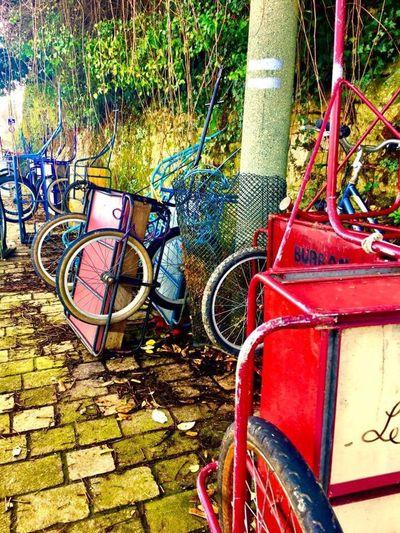 City / France 2 France Charette Bretagne Ileauxmoines île Sun Color Outdoors Journey First Eyeem Photo