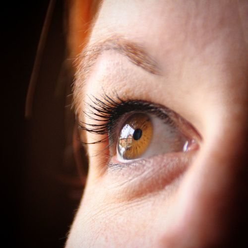 Cropped Image Of Woman With Brown Eyes