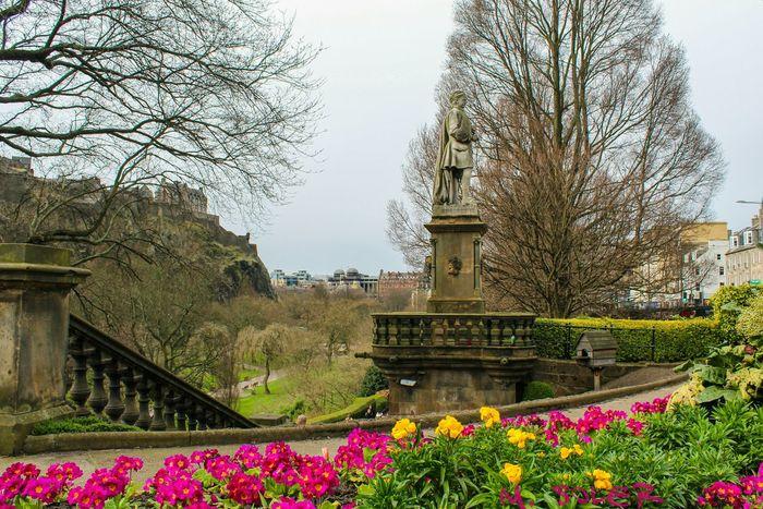 Edinburgh Edinburgh Castle Edinburgh, Scotland Edimburgo Scotland Escocia Princessgarden Flowers Garden Garden Photography Garden Flowers Jardin