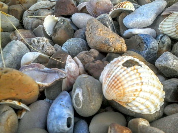 Summer Memories... Summer Pebbles Pebble Beach Pebbles And Stones Pebbles Pattern Shells Sea