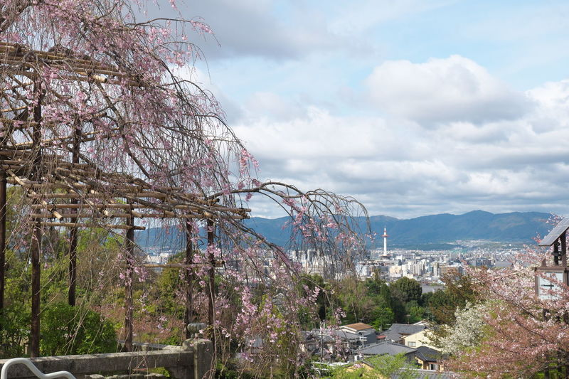 Architecture Beauty In Nature Built Structure City Cityscape Cloud Cloudy Day Japan Kioto Kyoto,japan Mountain Nature No People Outdoors Plant Scenics Sky Town TOWNSCAPE Tranquility Tree 京都