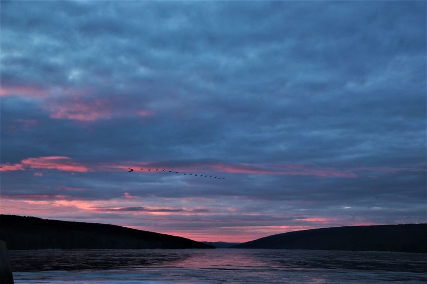 sunrise at Hemlock Lake - a small lake western New York Finger Lakes Region. Finger Lakes Of Western New York Morning Sky Sunrise_Collection Beauty In Nature Birds In Flight Cloud - Sky Lake Nature No People Outdoors Scenics Sky Tranquility Water