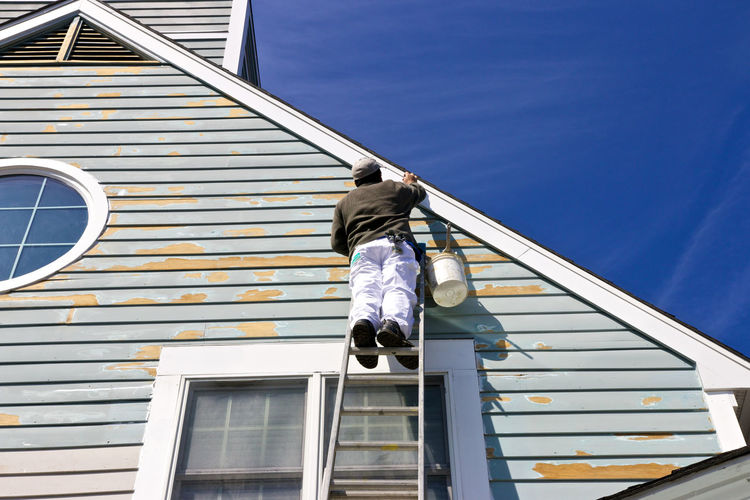 Low angle view of man painting house while standing on ladder