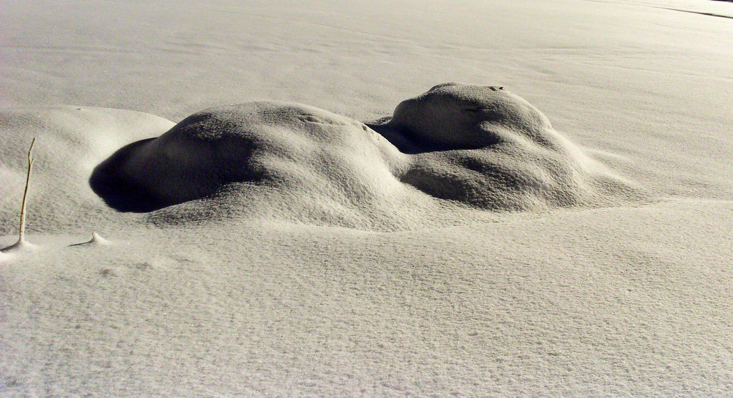 Snowdrift Minimalism Nature No People Snow Covered Snow Dunes Snowy Field White White Color