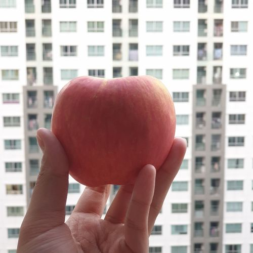 Close-up of hand holding apple against building