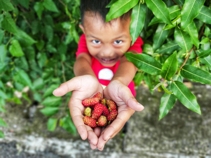 Portrait of boy holding berries
